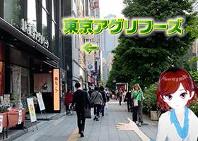 ソフトキャンパス新宿校アクセス 道順2